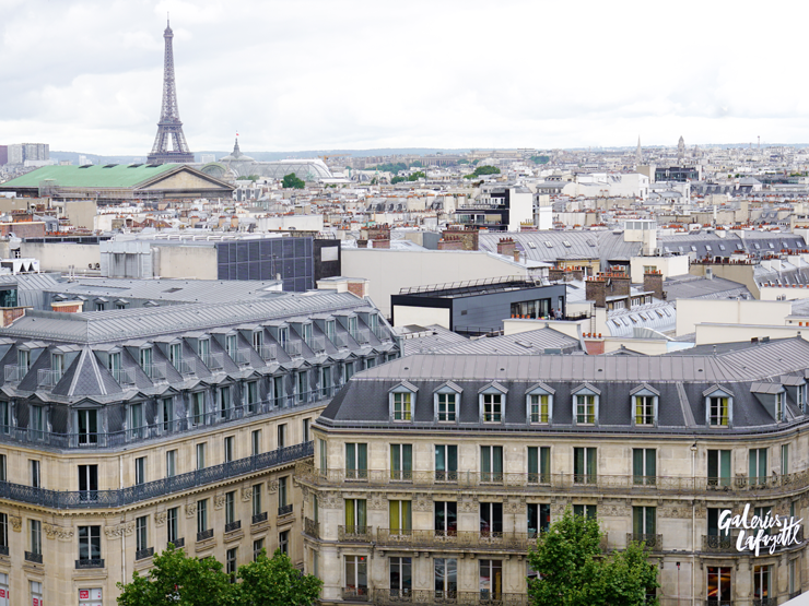 View from Galeries Lafayette rooftop