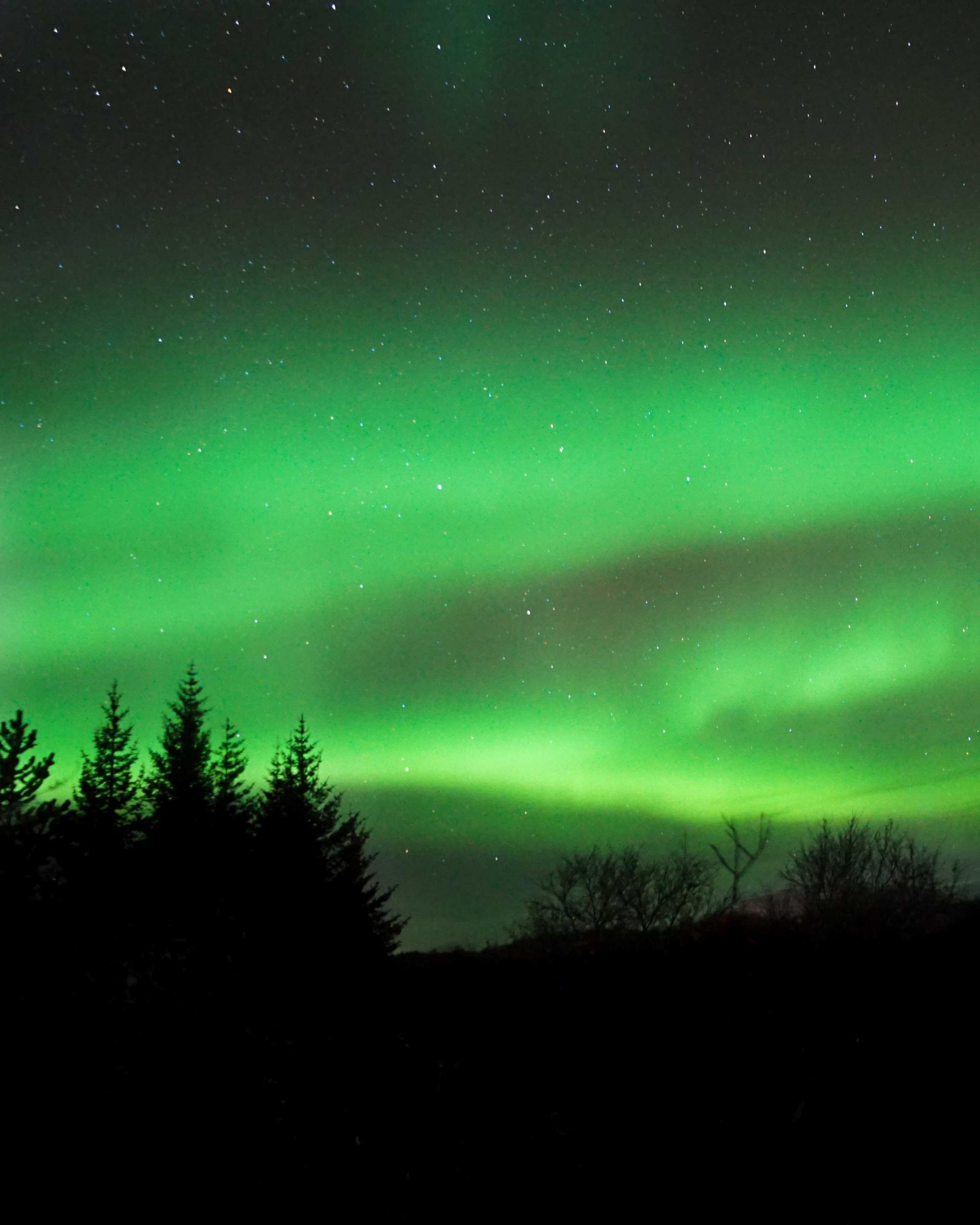 when to see the northern lights in iceland