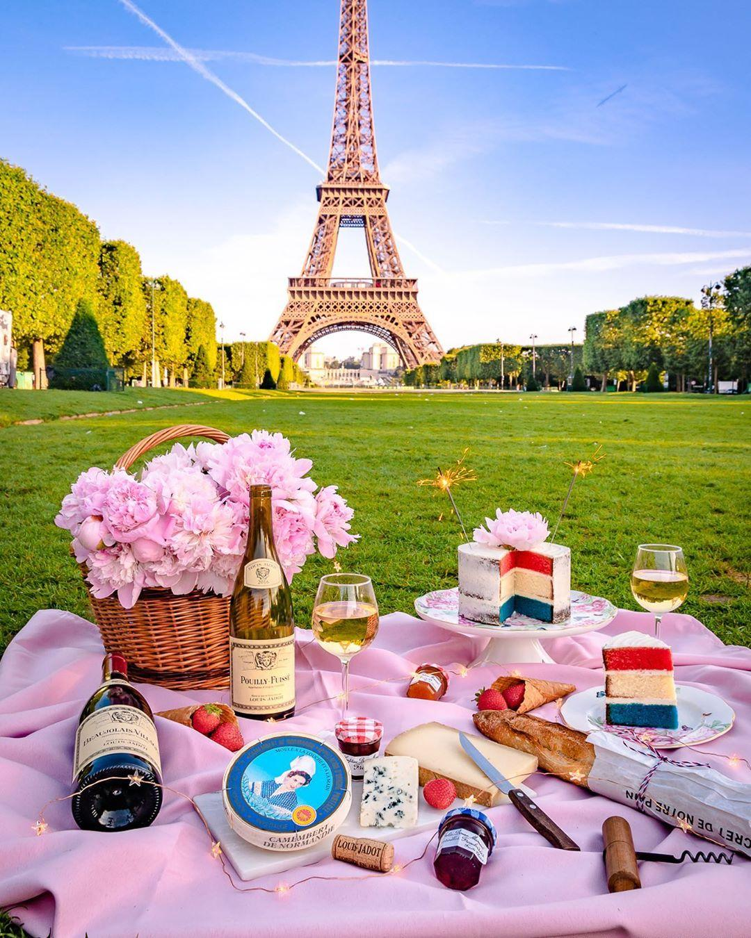 picnic in front of the eiffel tower