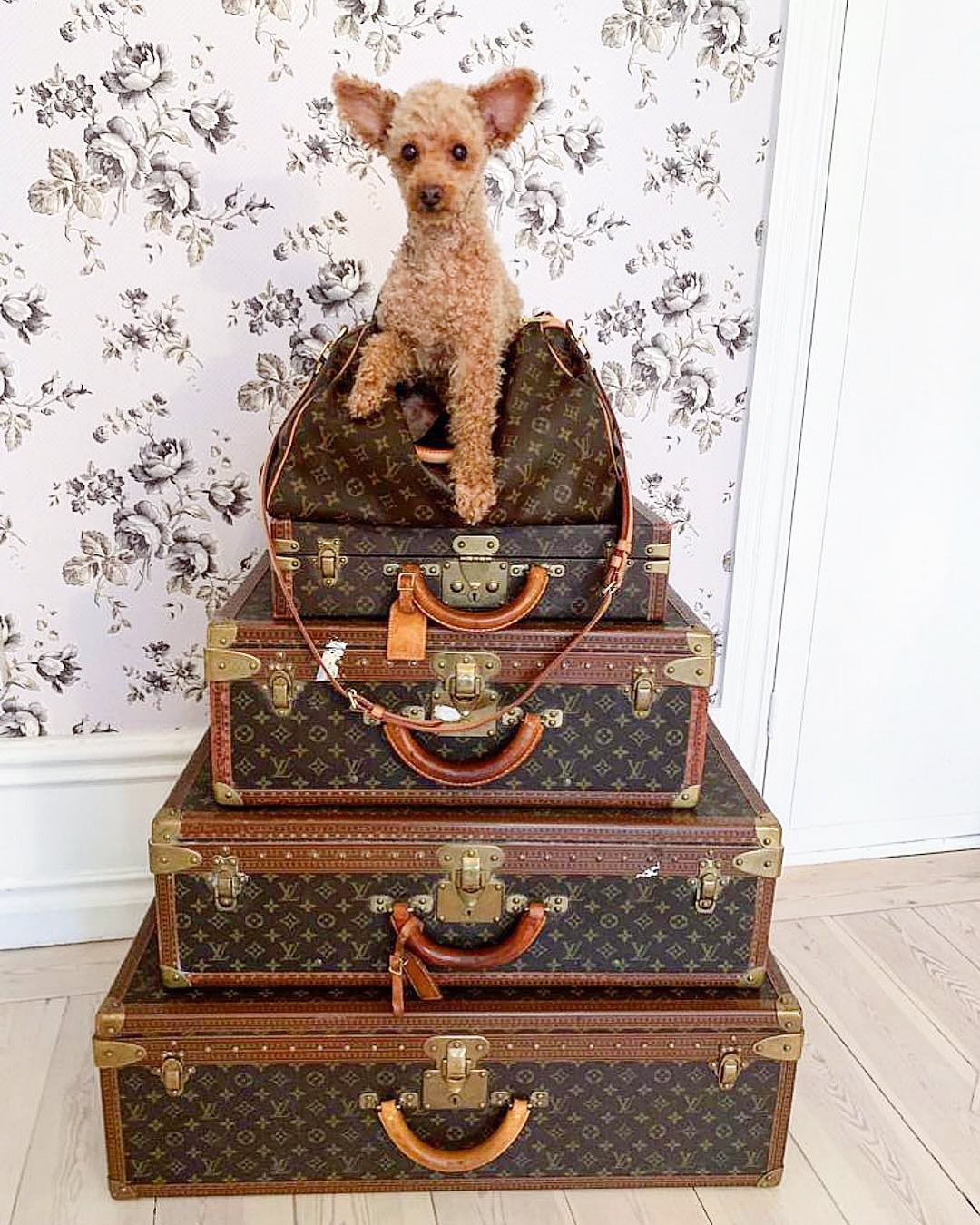 Louis Vuitton trunks stacked